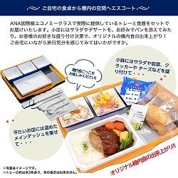 ANA機内食ごっこ